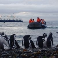 Contours Travel Australis Cruise