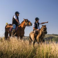 Chile Patagonia Tierra Chiloe horseback riding Contours Travel