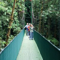 Canopy Trail in Monteverde Costa Rica Central America Contours Travel