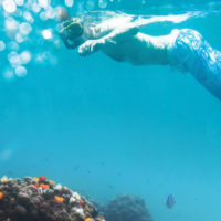 One Ocean Resolute Snorkelling Central America Contours Travel